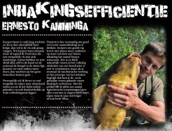 Inhakingsefficientie,  ERNESTO KAMMINGA