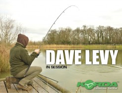 In Session - Dave Levy