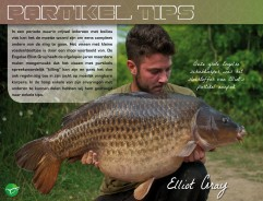 Partikel Tips - Elliot Gray